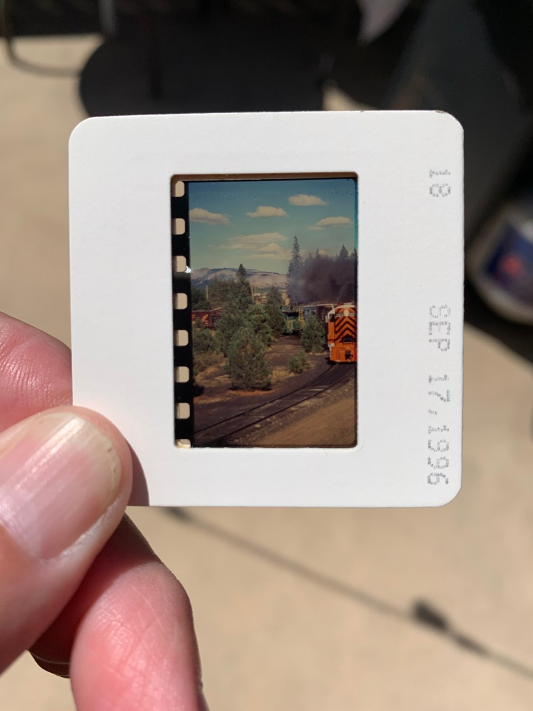 Image of the original slide in the mount.